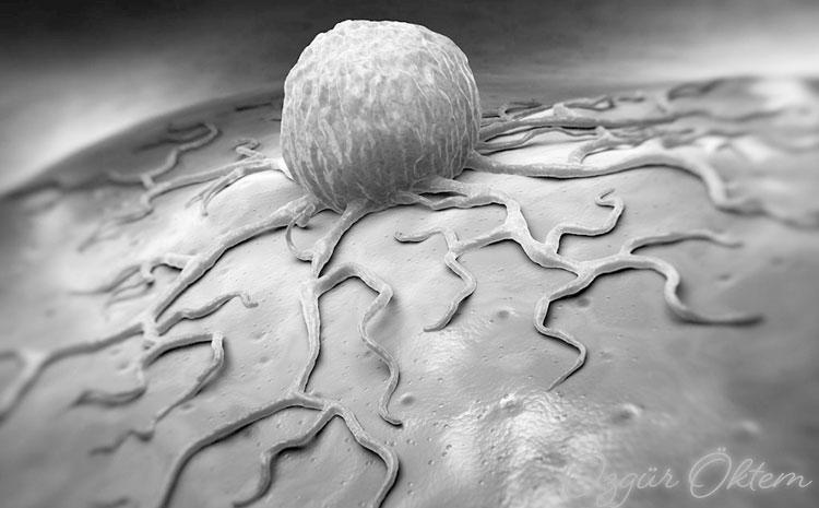 Kanser Tedavisine Bağlı Kısırlık ve Korunma Yolları